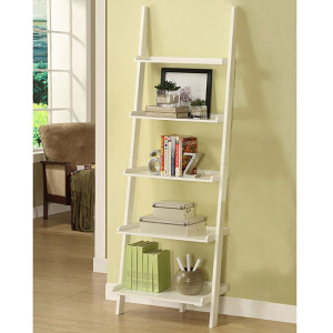 Overstock.com (Five tier Leaning Ladder Shelf)